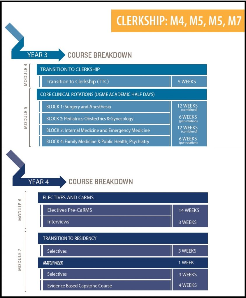 A diagramatic overview of the Clerkship Curriculum
